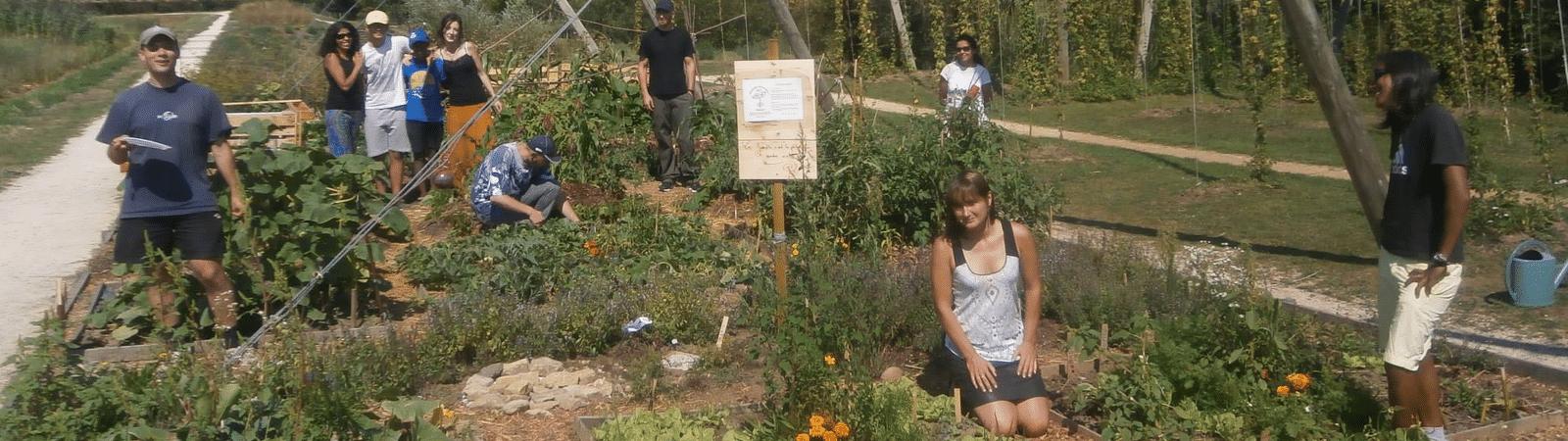 Jardins Jean-Marie Pelt